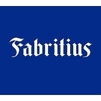 Fabritius Gruppen AS